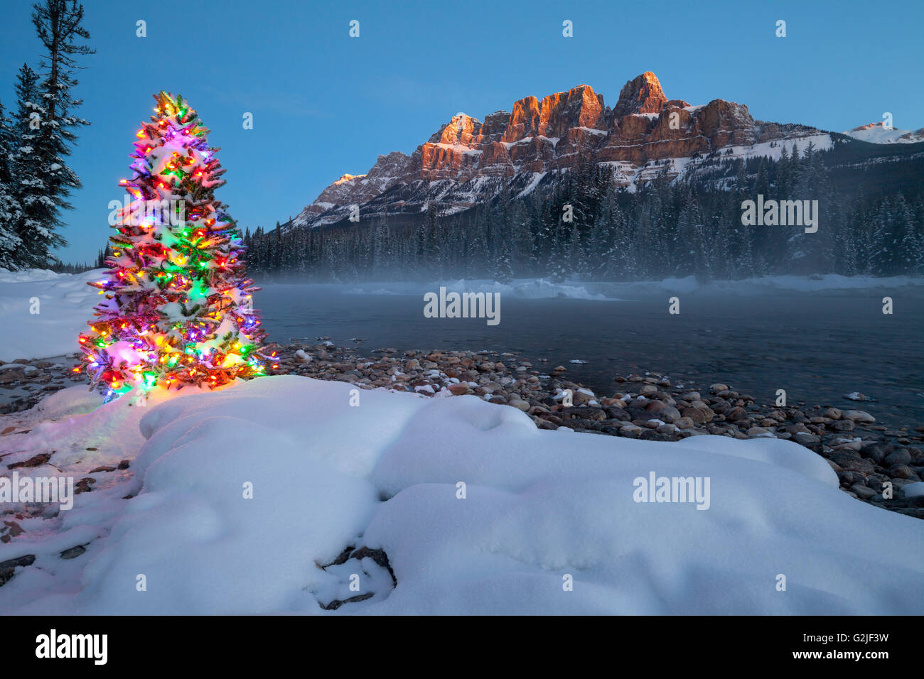 Mountain Christmas Tree.Christmas Tree Castle Mountain And The Bow River In Winter