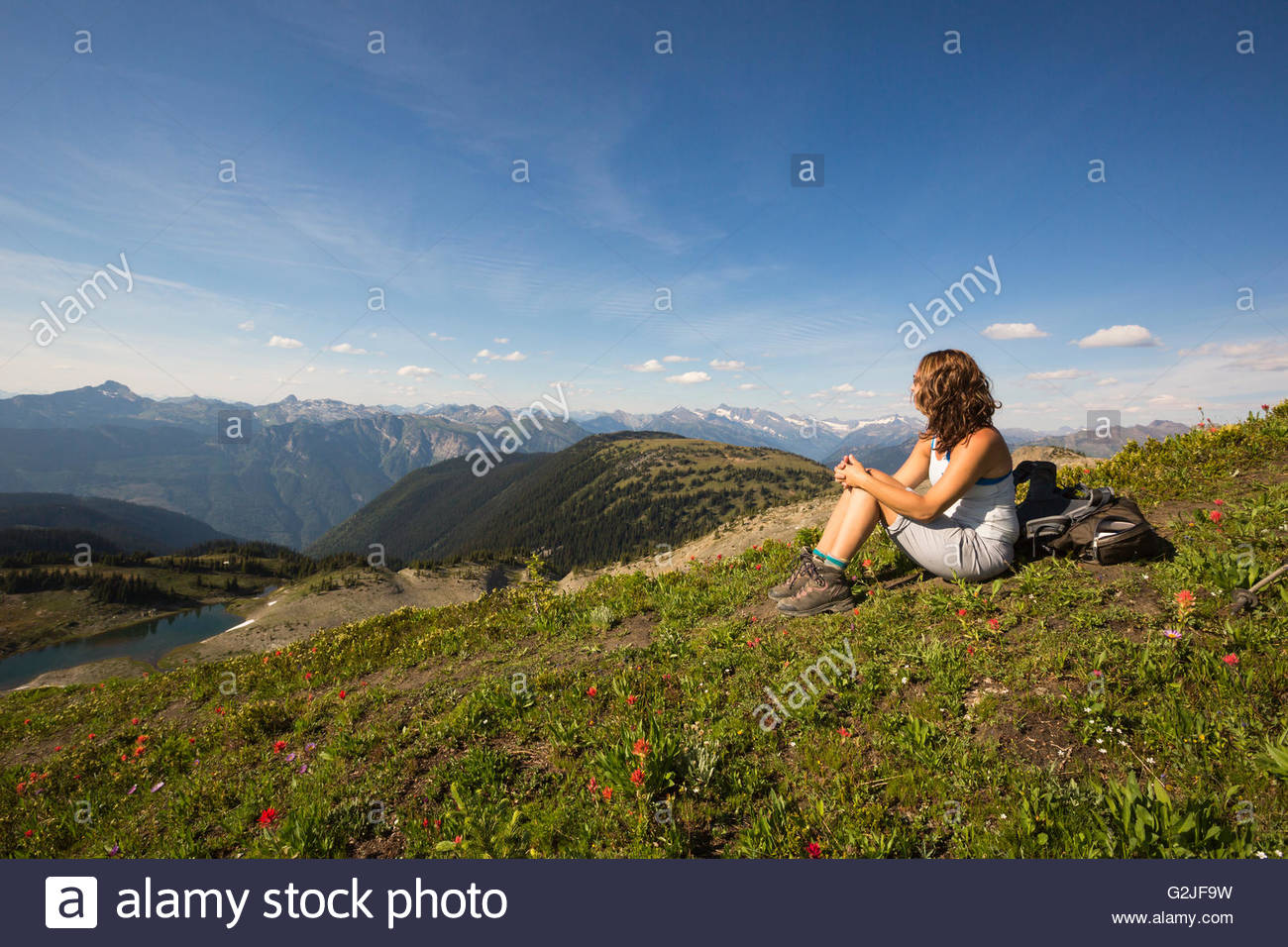Female Hiker Sitting In Alpine Below The Summit Of Mt Mccrae Kootenay Region British Columbia Canada