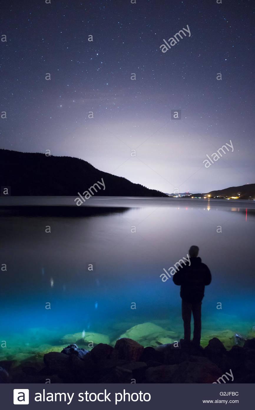 Nightime silhouette along the shore of Kalamalka Lake, British Columbia, Canada - Stock Image