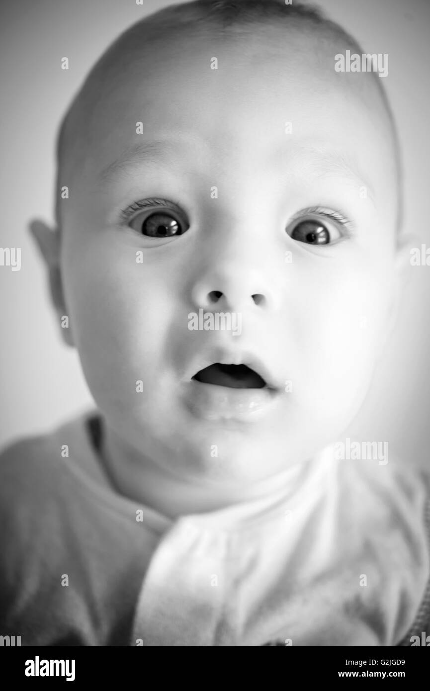 portrait of a 4 months old boy - Stock Image