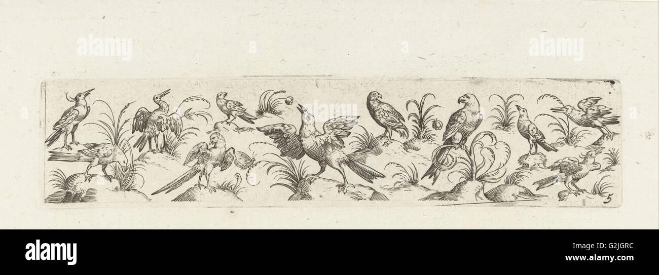 Frieze eleven birds and insect, Pieter Serwouters, Hans Collaert (I), Marcus Geeraerts, c. 1607 - Stock Image