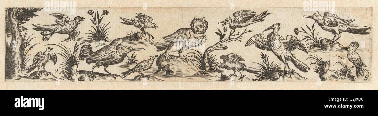 Frieze featuring eleven birds, at the left end is a tree, Hans Collaert (I), Claes Jansz. Visscher (II), 1631 - Stock Image