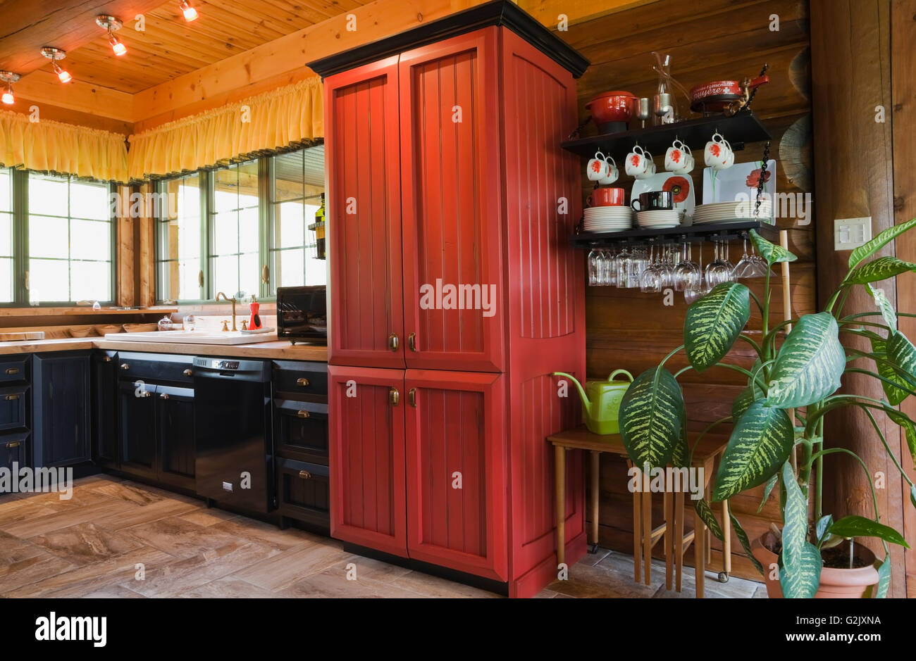 Brilliant Kitchen Red Black Wooden Cabinets Plus Green Dieffenbachia Home Interior And Landscaping Ologienasavecom