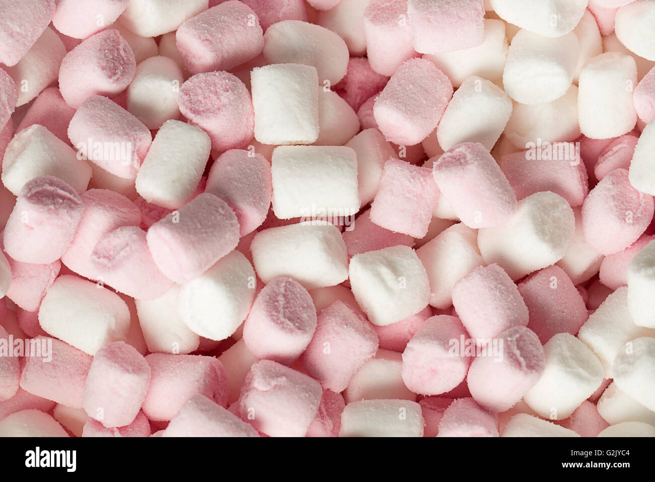 Pink and white marshmallows - Stock Image
