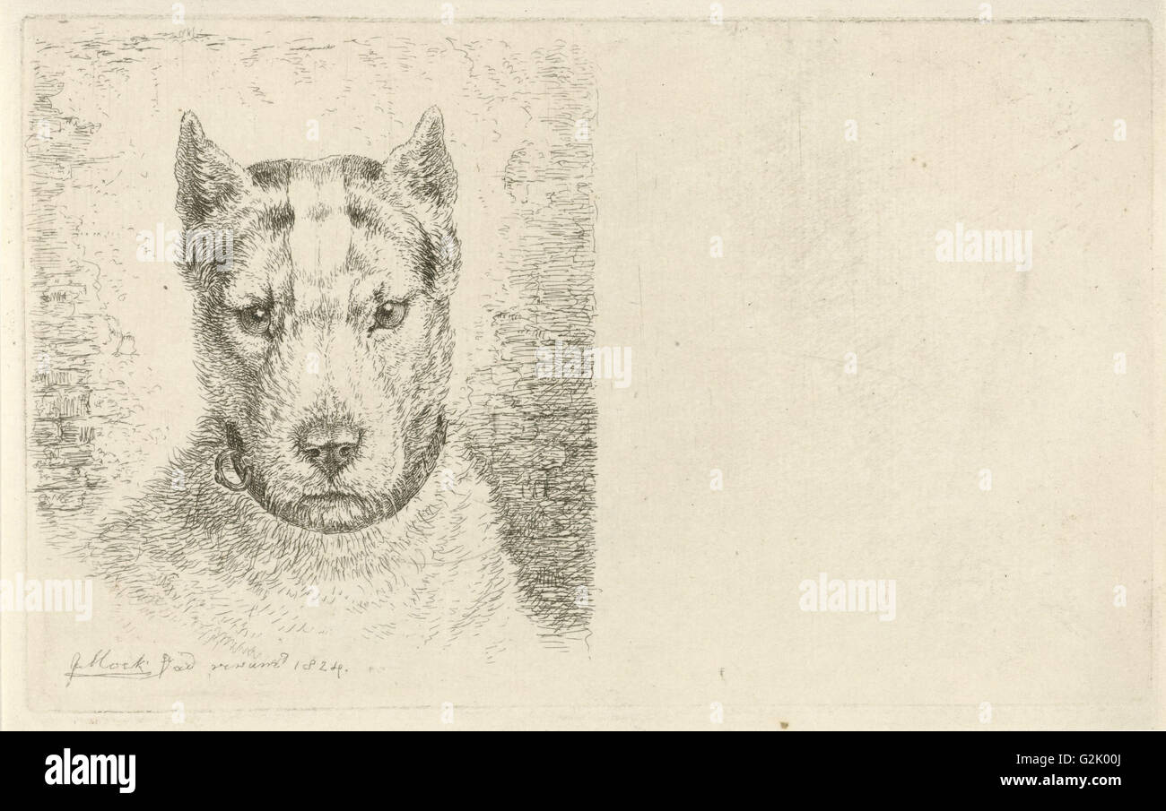 Dogs head with collar, Johannes Mock, 1824 - Stock Image