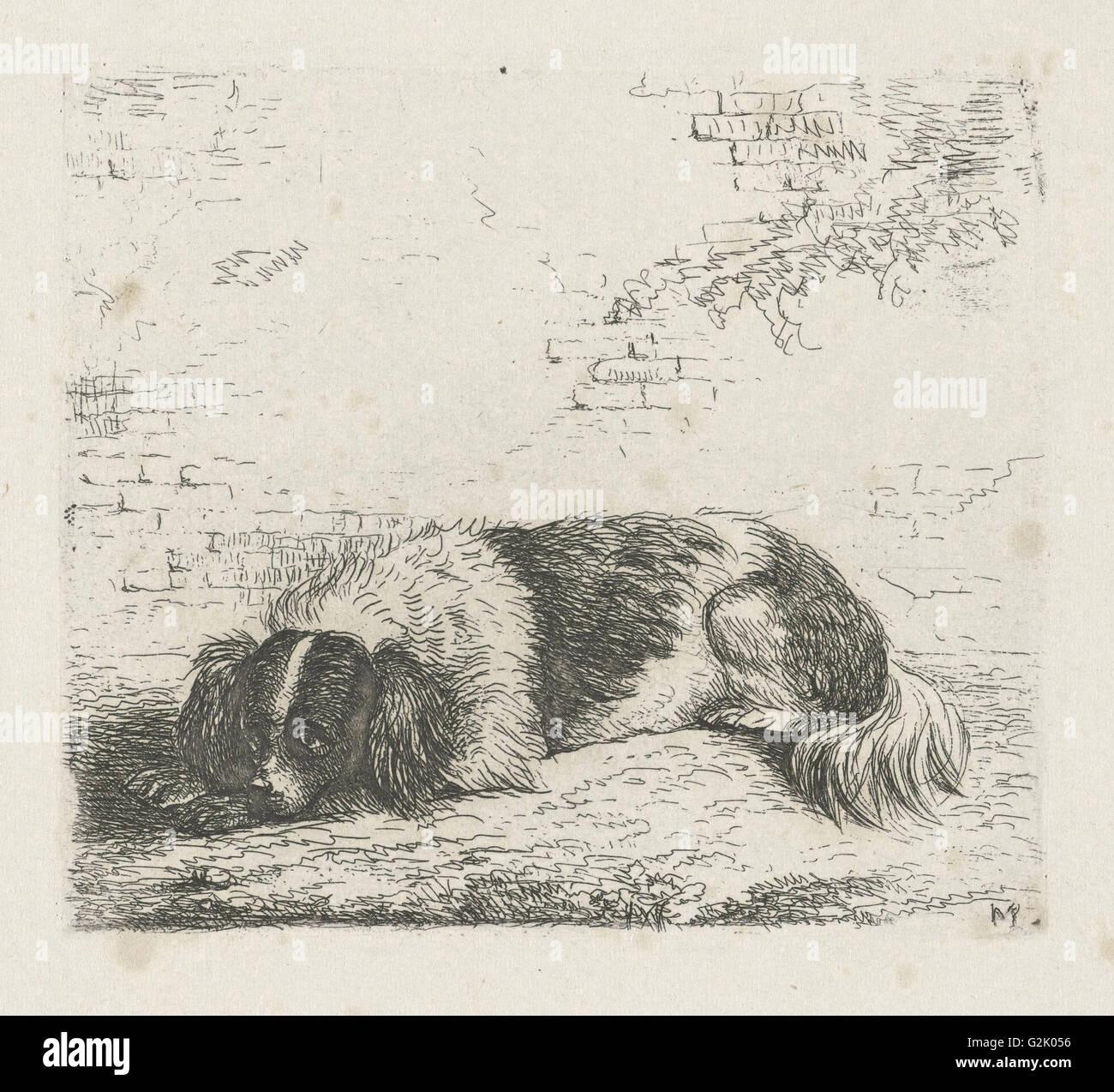 Lying dog left, Christiaan Wilhelmus Moorrees, 1811-1867 - Stock Image