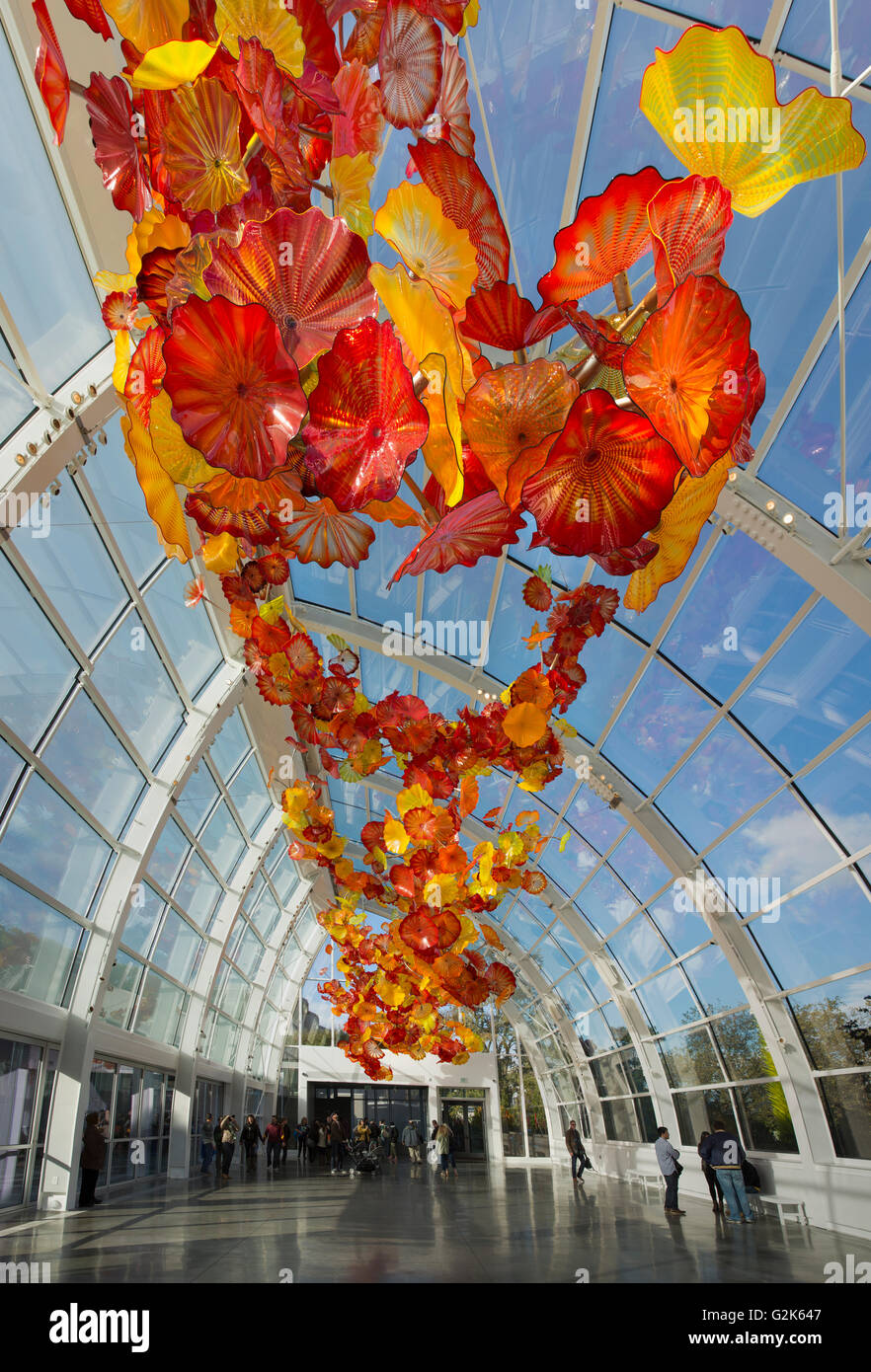 Dale Chihuly Sculptures
