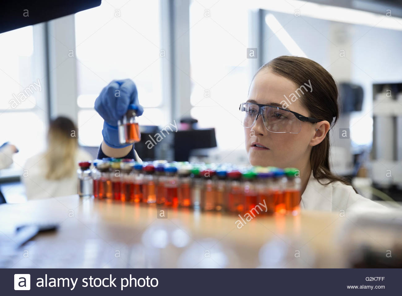 Scientist examining liquid samples in laboratory - Stock Image