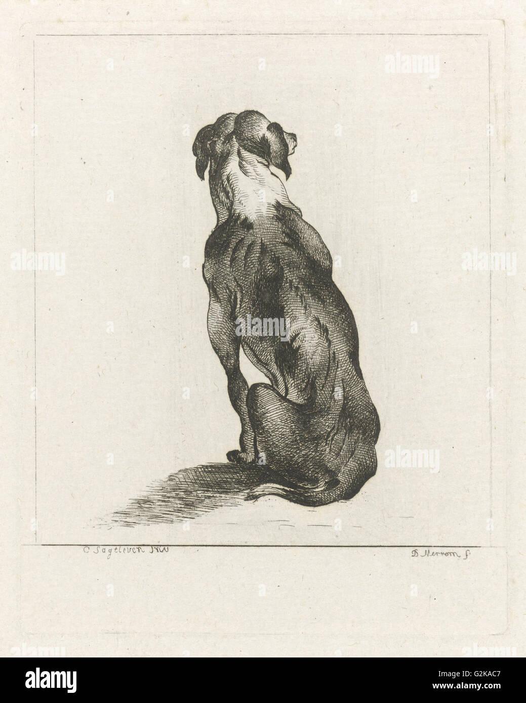 Sitting dog, D. Merrem, 1700 - 1800 - Stock Image