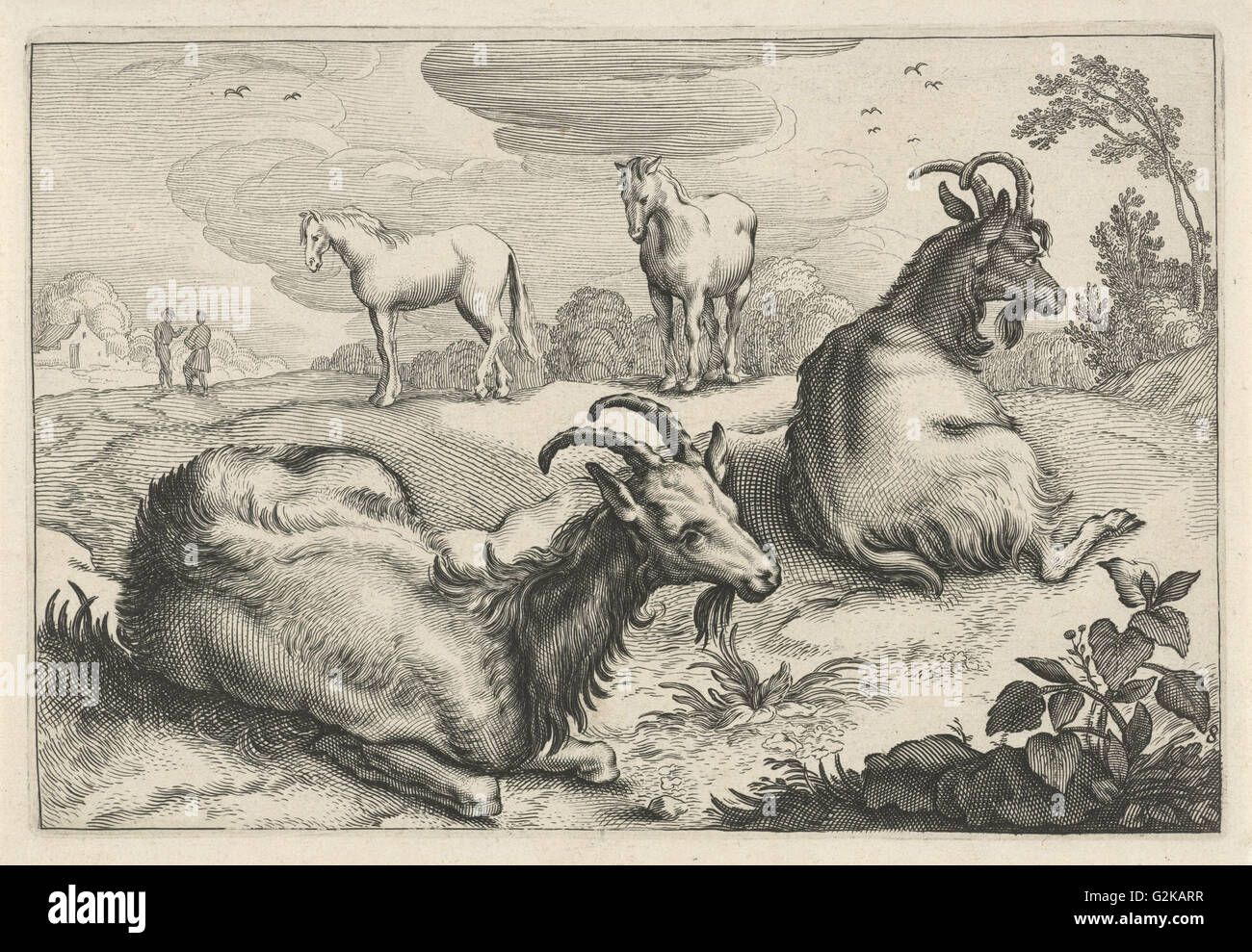 a horse and two goat literary It deals with icse english language and literature monday, 12 march 2018 a horse and two goats extract i of the seven hundred villages dotting the map of india .