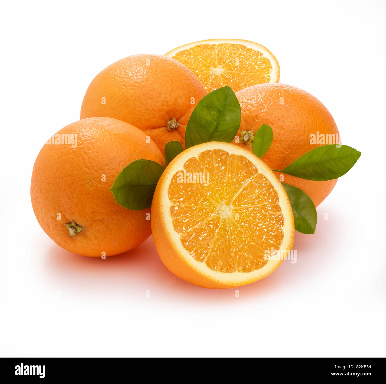 Oranges (Citrus sinensis) with leaves, white background - Stock Image