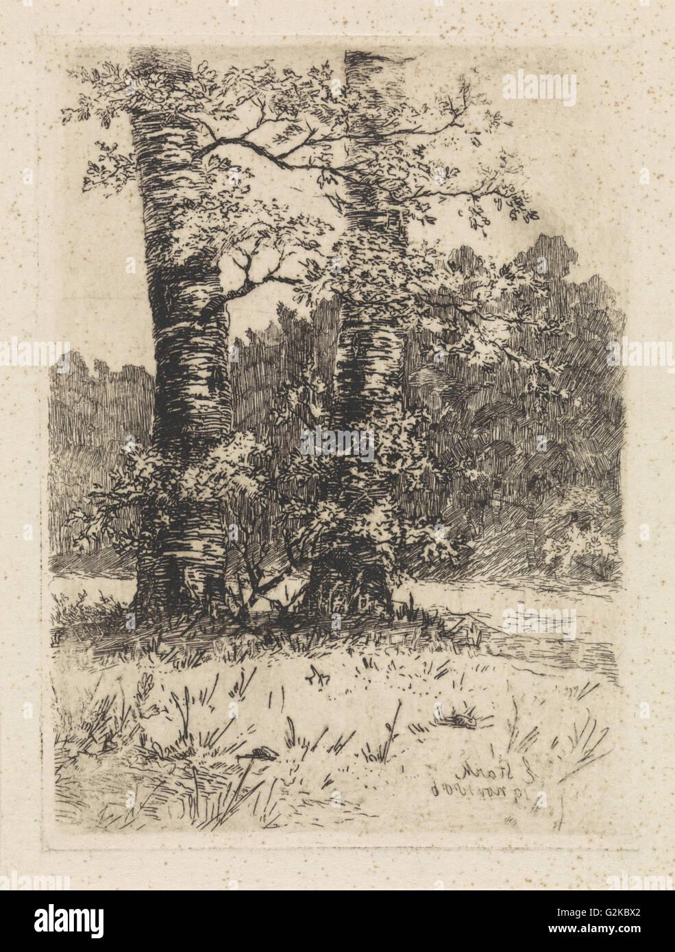 Two trees, Elias Stark, 1886 - Stock Image