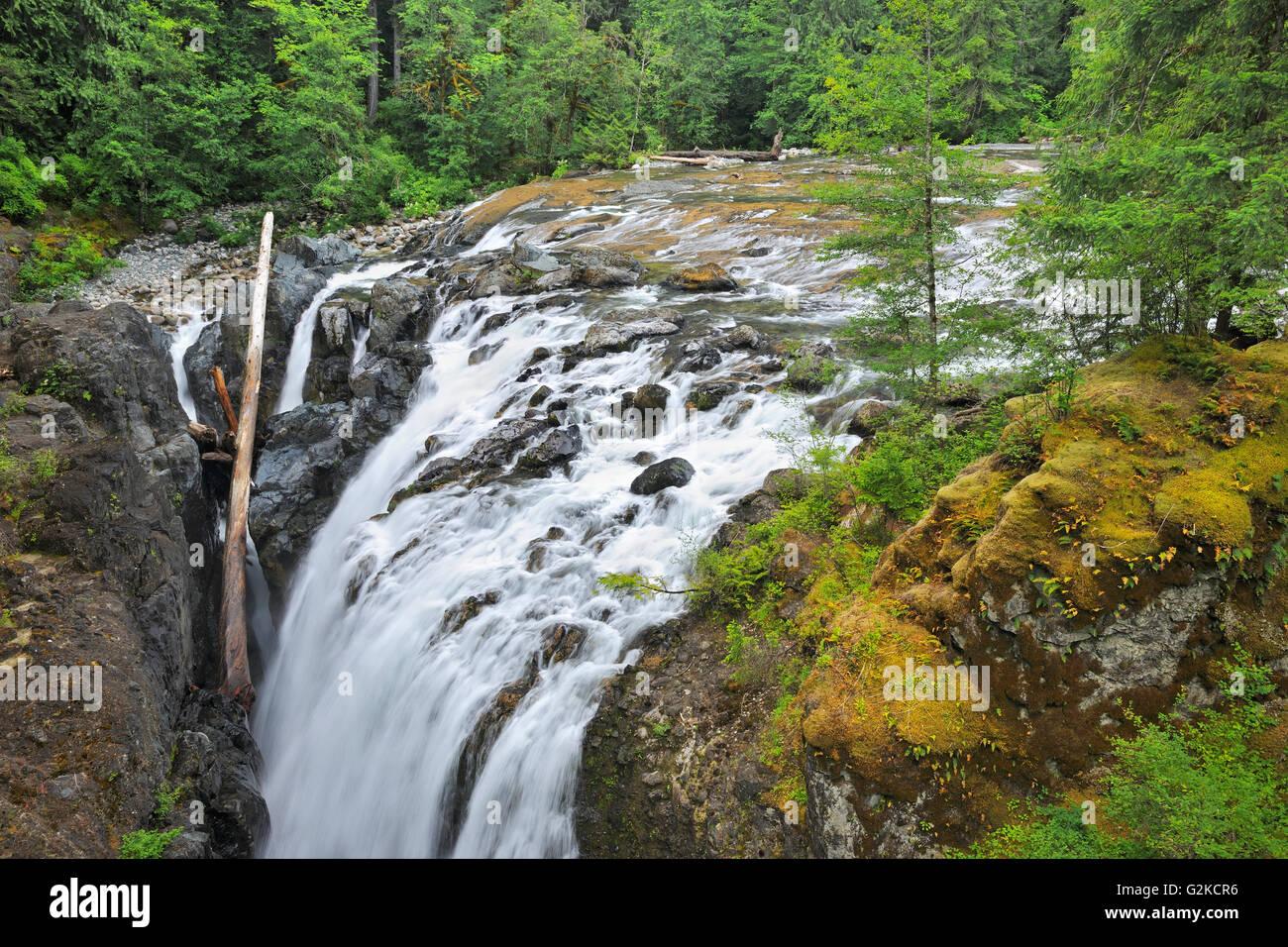 Englishman River Falls Englishman River Falls Provincial Park British Columbia Canada - Stock Image