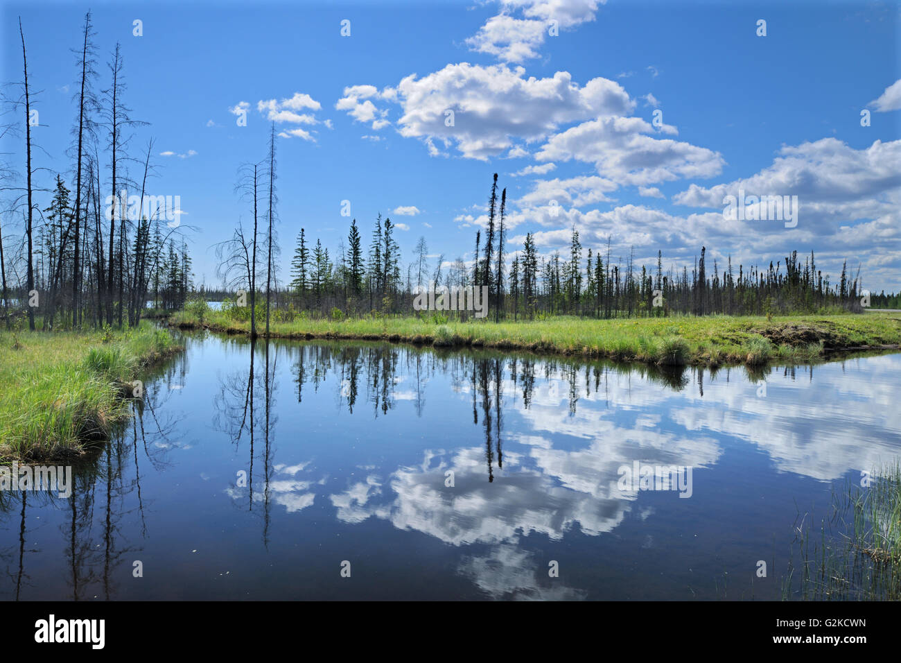 Cumulus clouds reflected in wetland Yellowknife Highway Northwest Territories Canada - Stock Image