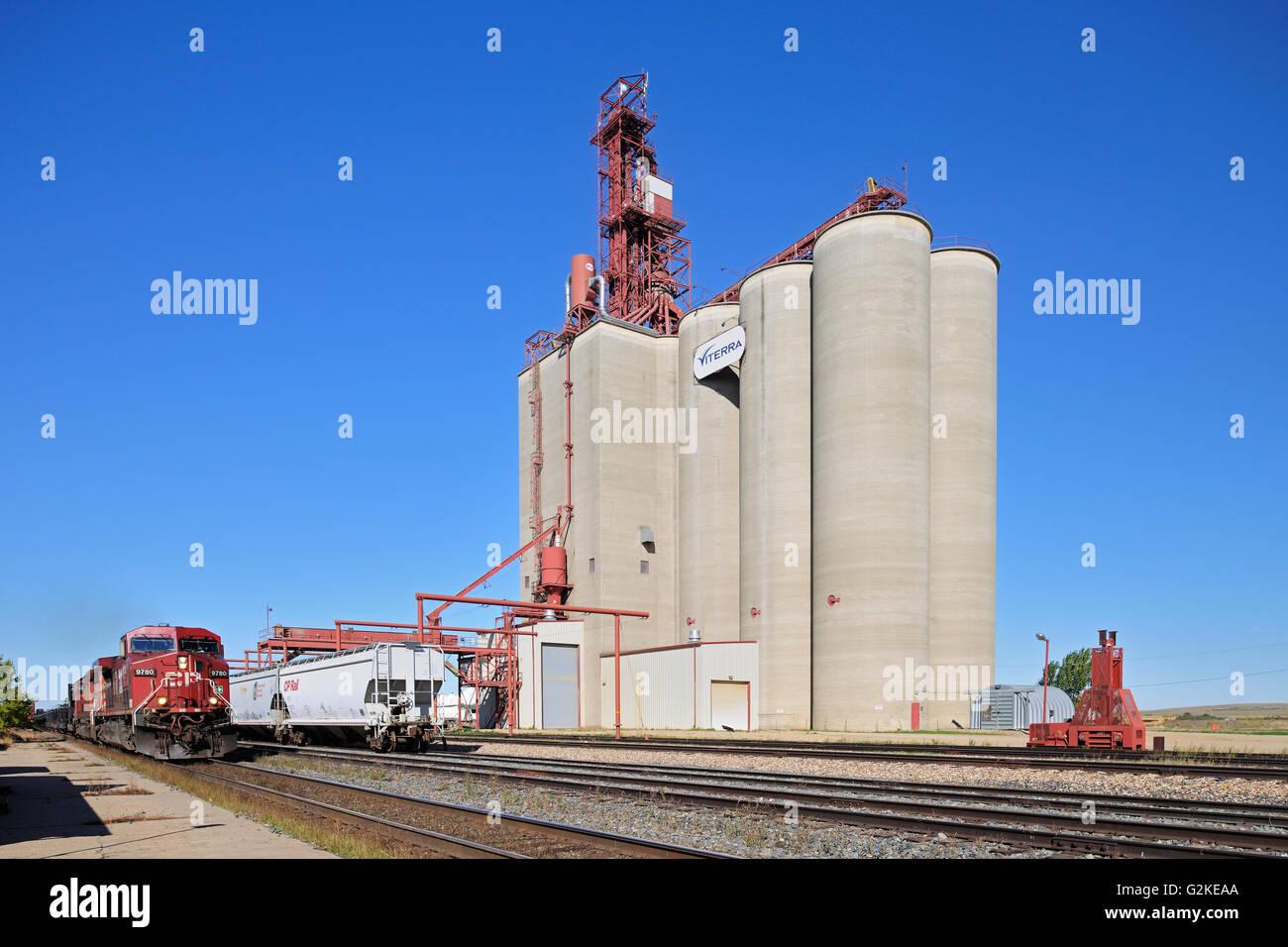 Inland grain terminal and train with railway tracks Maple Creek Saskatchewan Canada - Stock Image