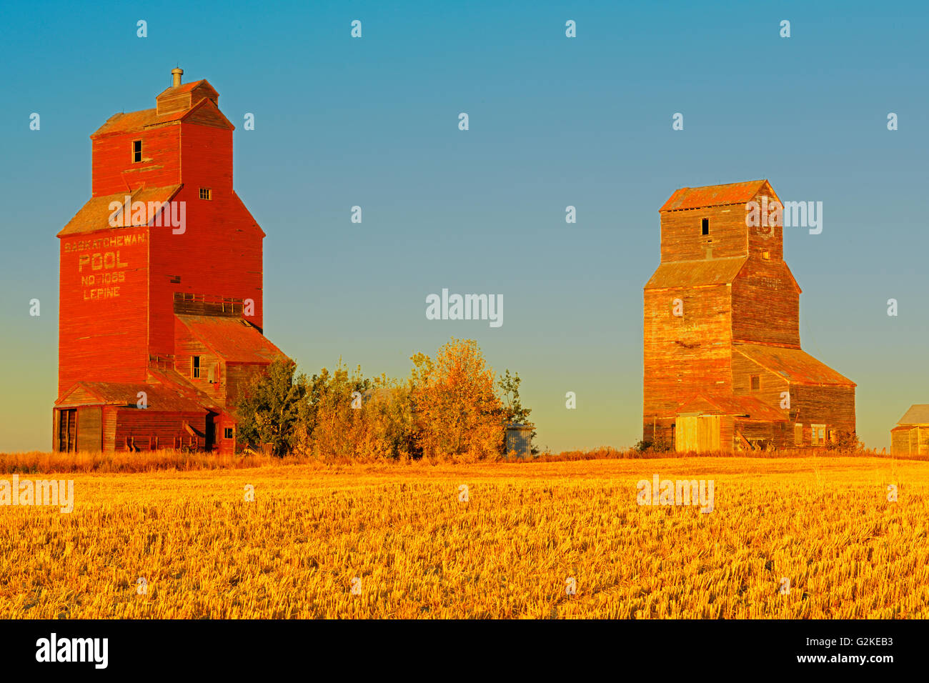 Grain elevators in ghost town Lepine Saskatchewan Canada - Stock Image