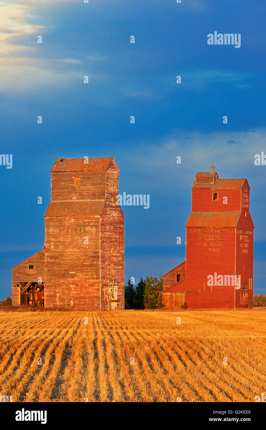 Grain elevators at sunrise Lepine Saskatchewan Canada - Stock Image