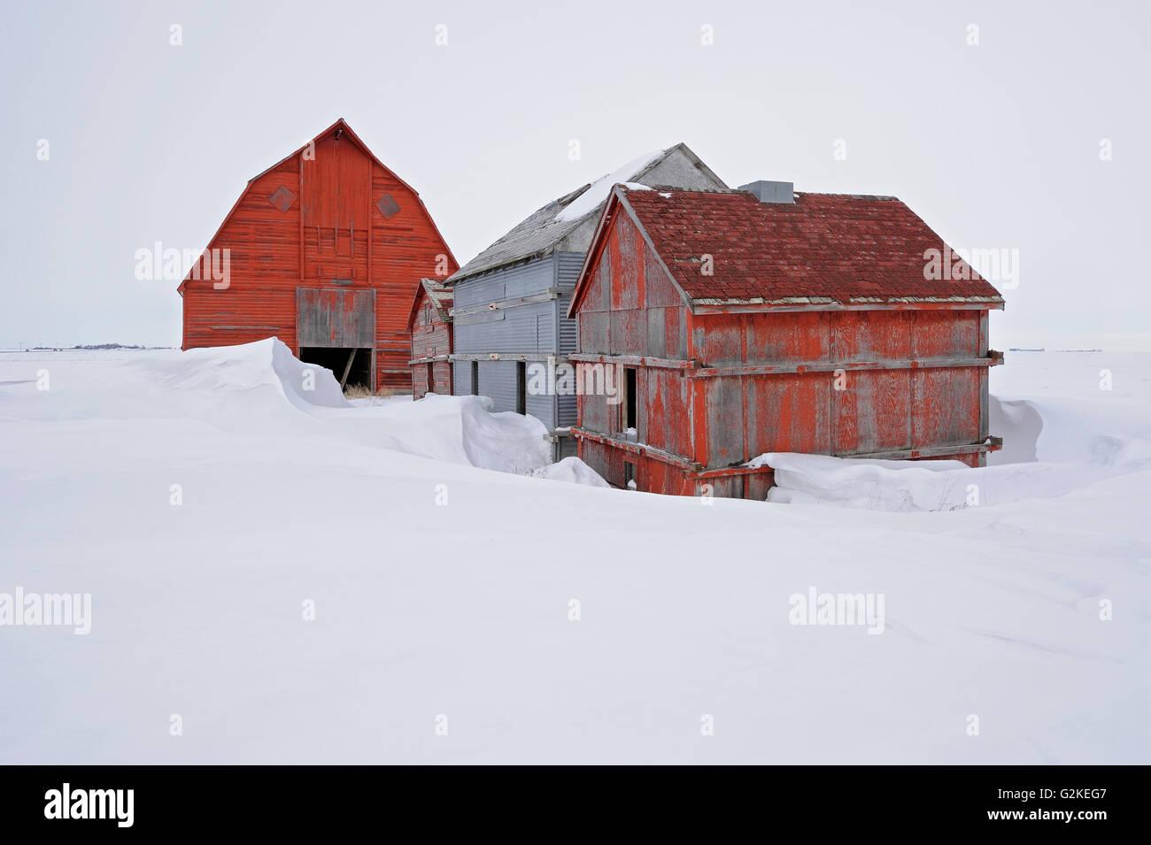 Old farmstead Rowatt Saskatchewan Canada - Stock Image