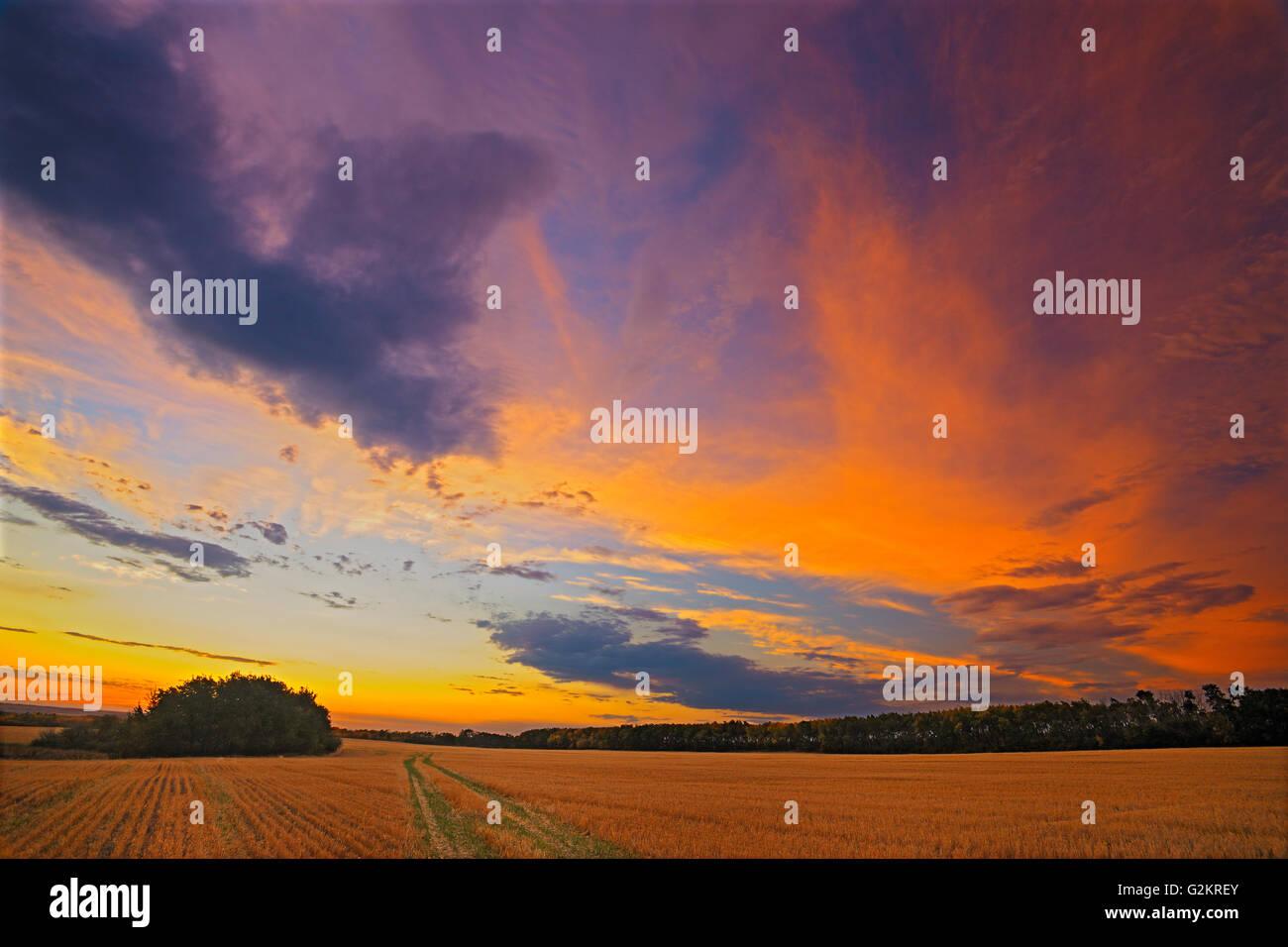 Sunrise at 'Bolton Farm' Baljennie Saskatchewan Canada Stock Photo