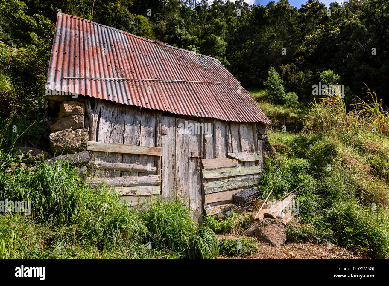 Dilapidated Shed - Stock Image