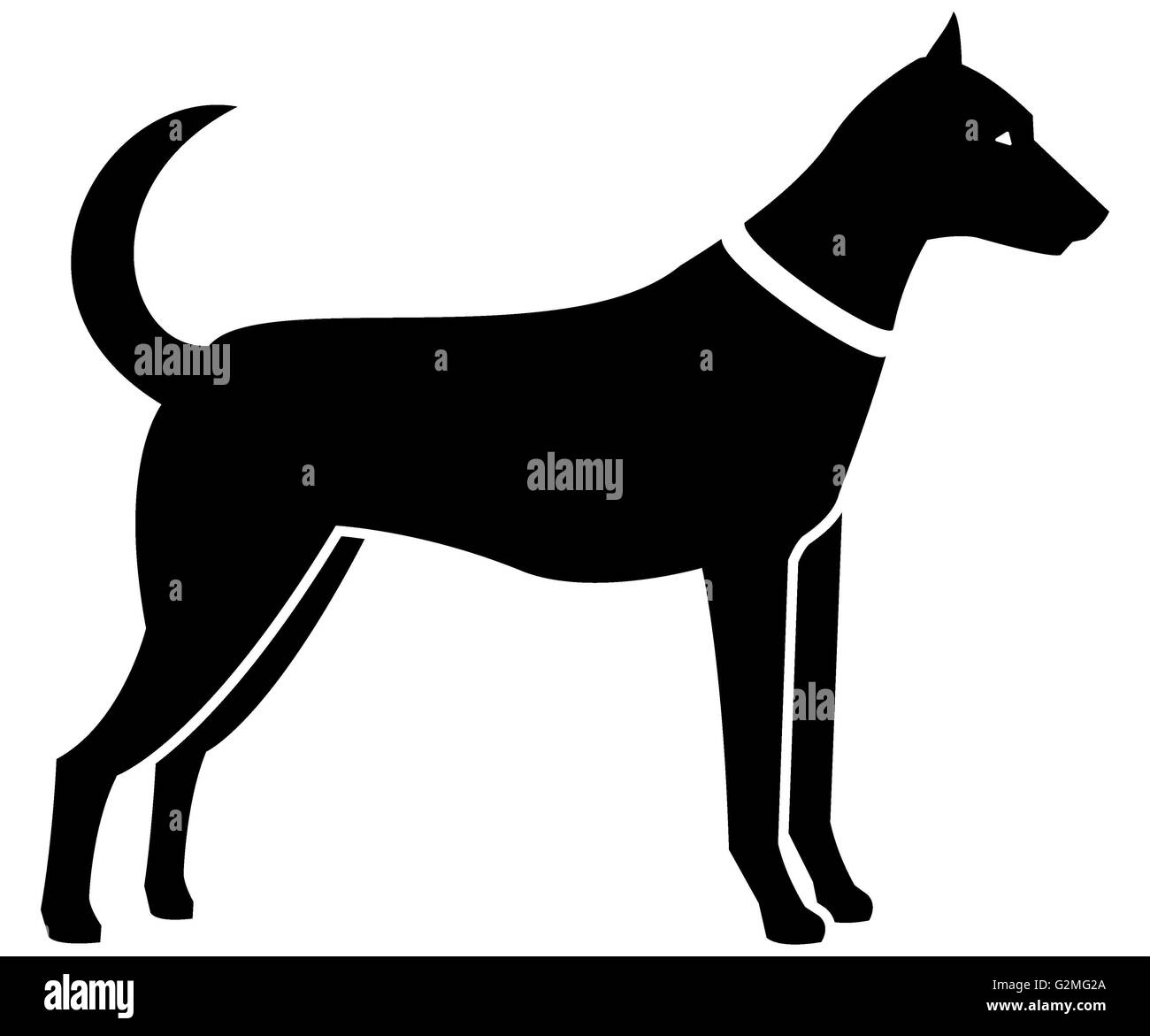 Silhouette of dog on white background - Stock Image