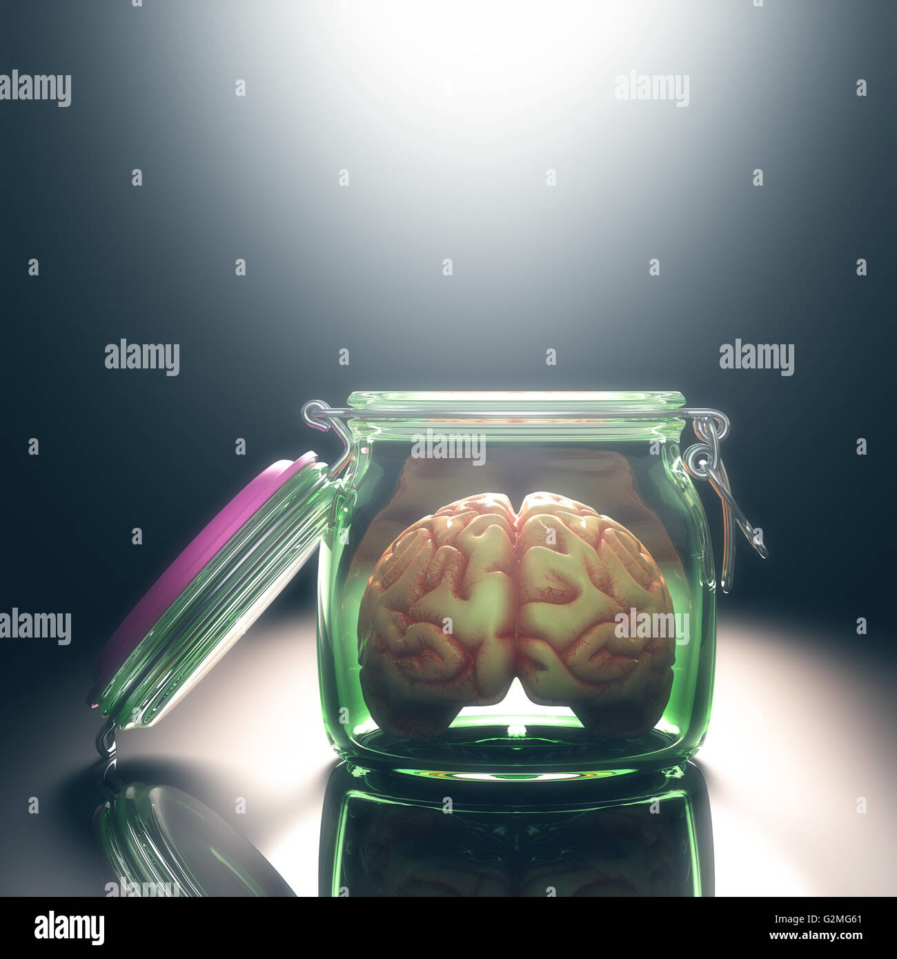 Brain in the pot with the lid open. Open and free mind concept. Your text on the light. Clipping path included. - Stock Image