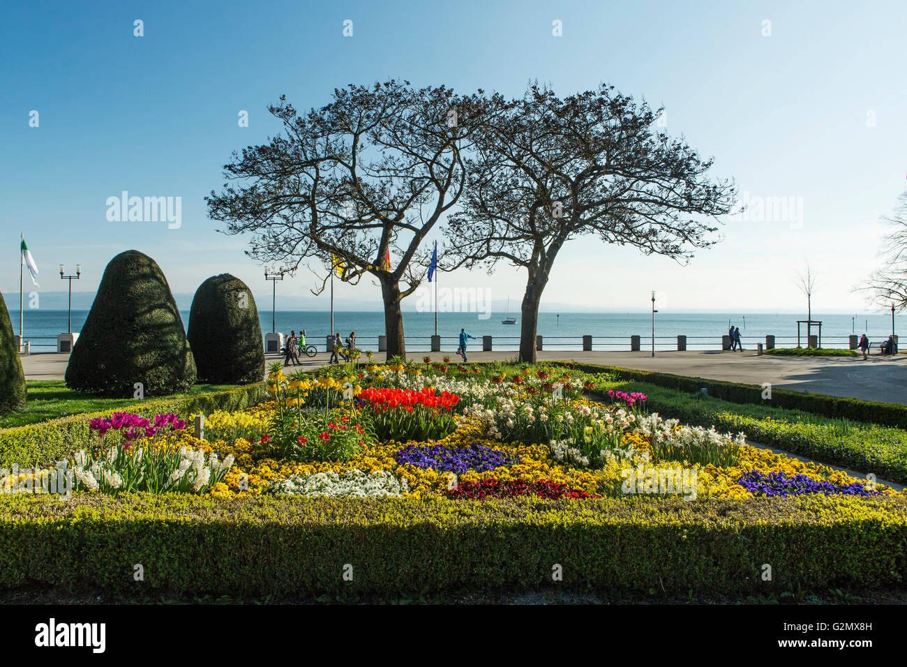 Flowering park at Lake Constance in Friedrichshafen harbor. - Stock Image