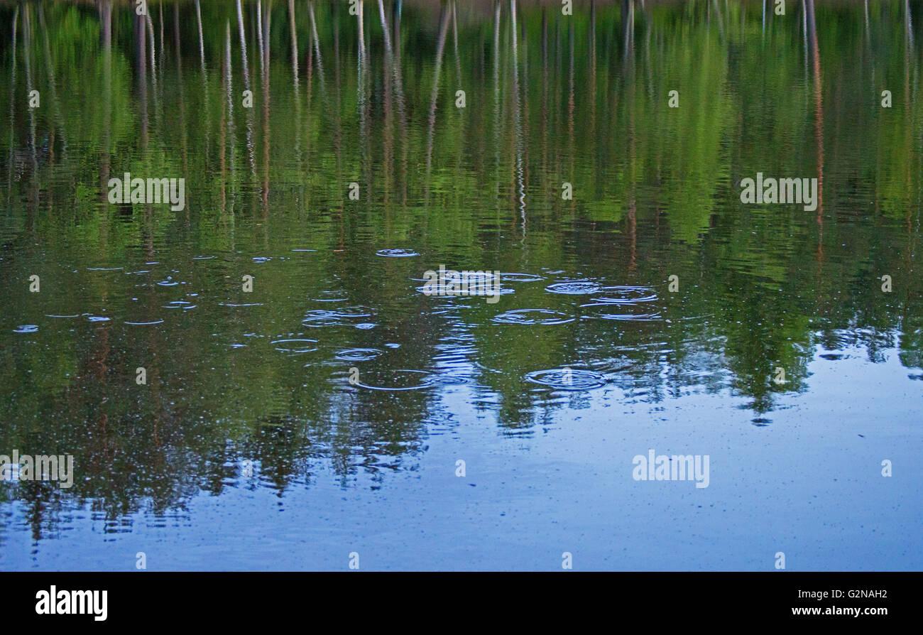 Waterdrop splashing on lake. - Stock Image