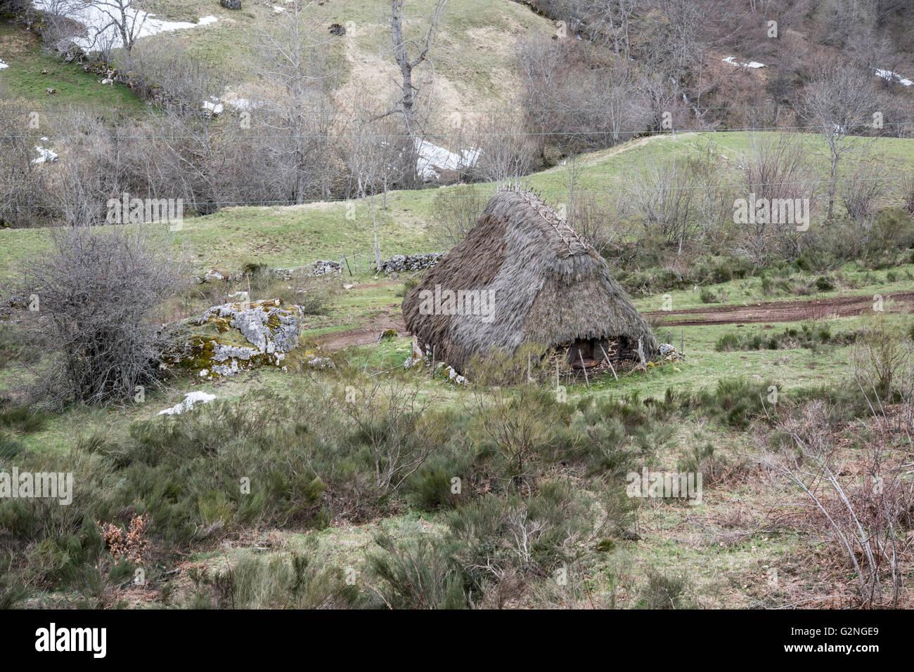 Teito, Arroyo de los Lagos, Parque Natural de  Somiedo, Asturias, Northern Spain. Stock Photo