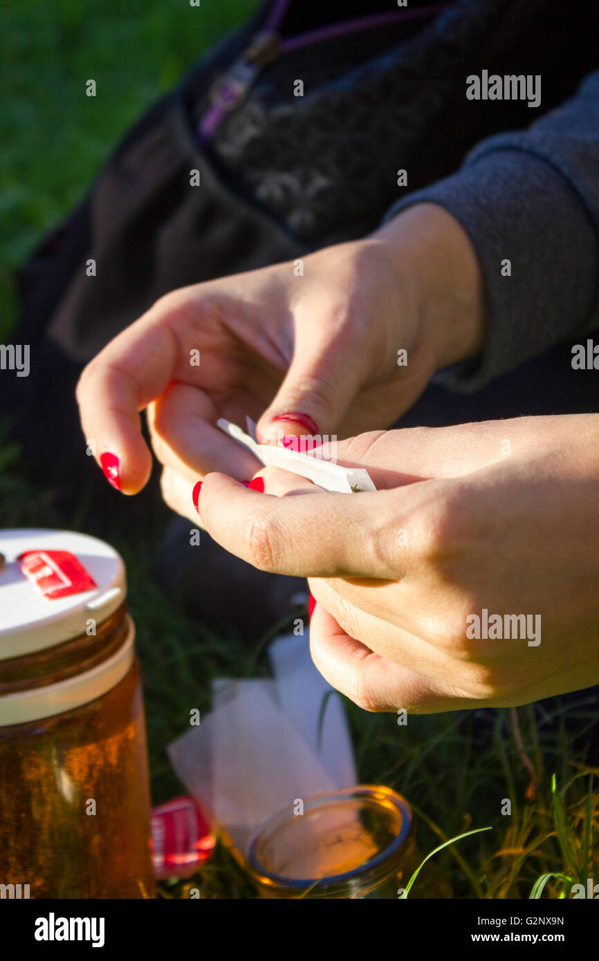 Female hands rolling a marijuana joint - Stock Image