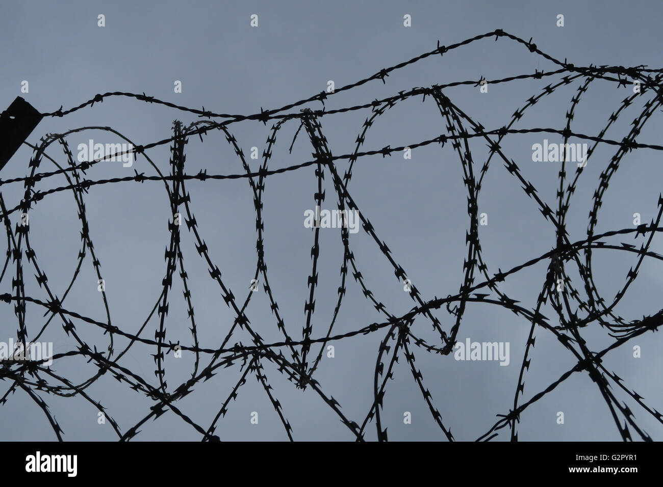 top of barbed wire fence - Stock Image