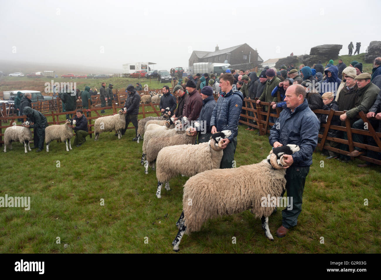 Competitors in The 63rd Tan Hill Open Swaledale Sheep Show 2016, Near Richmond, North Yorkshire, UK Stock Photo