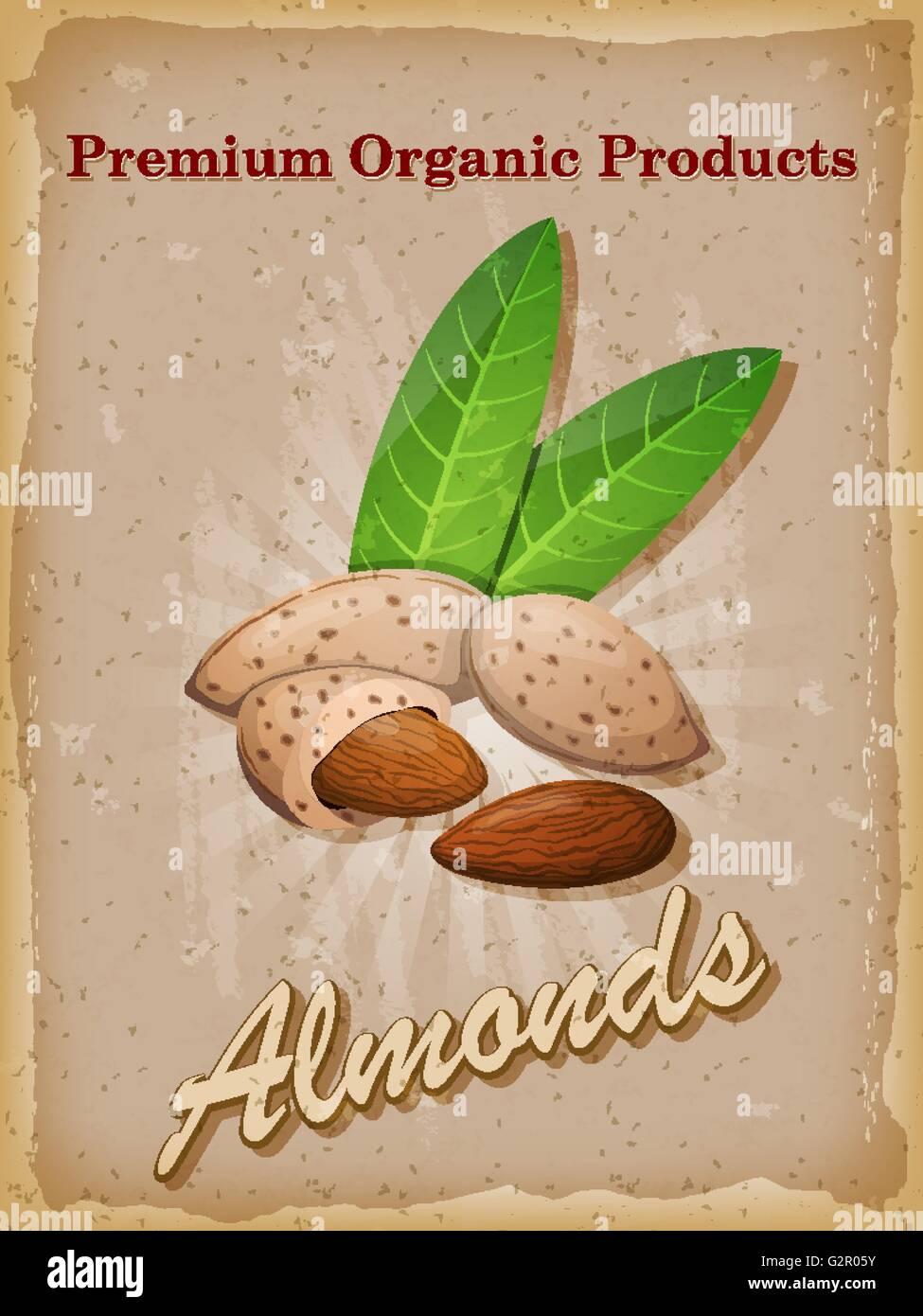 Almonds Vintage Poster Vector Illustration Stock Vector Art