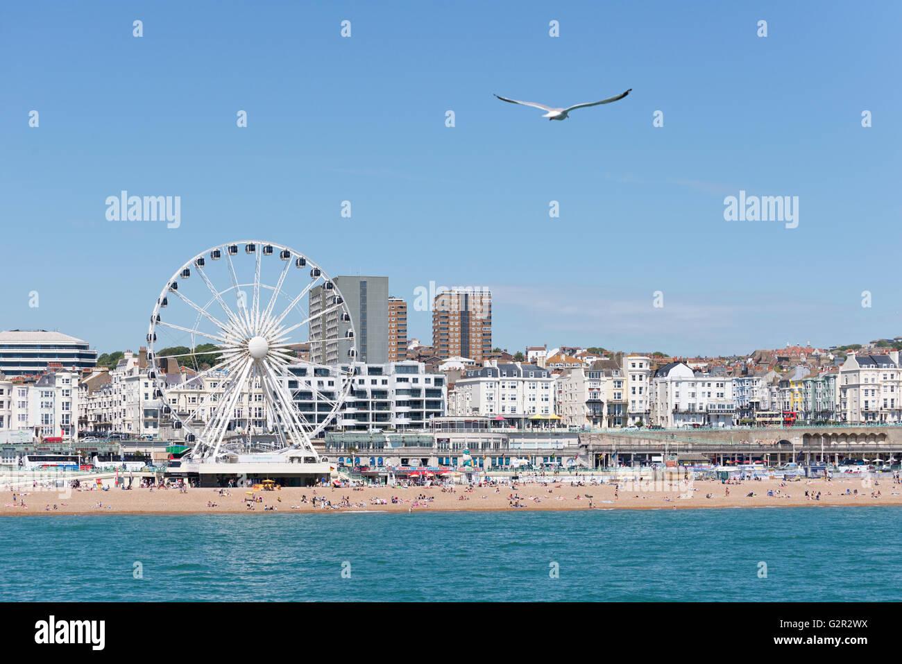 Brighton beach view - Stock Image