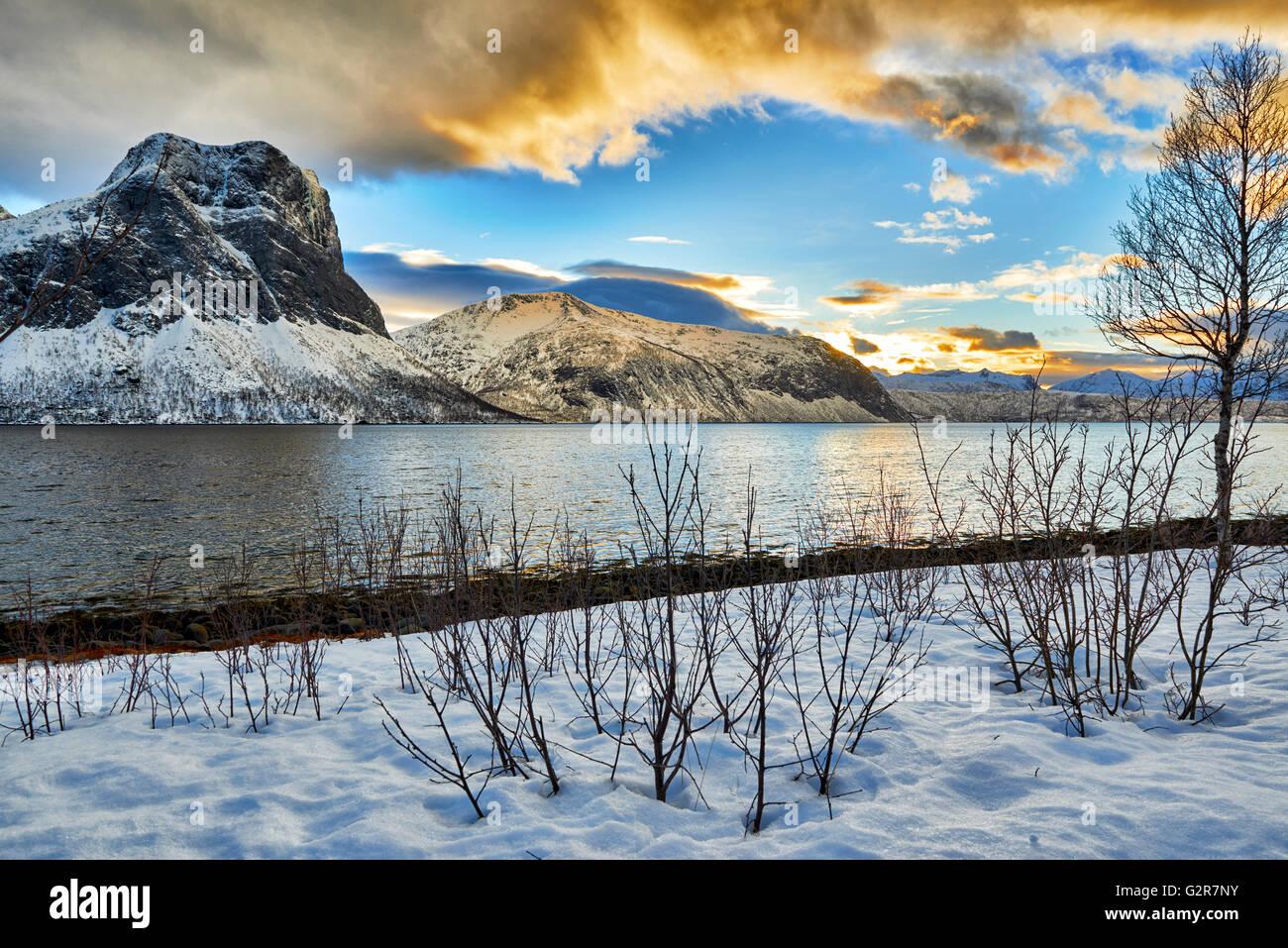 winter landscape of Bergsfjorden, Senja, Skaland, Troms, Norway, Europe - Stock Image
