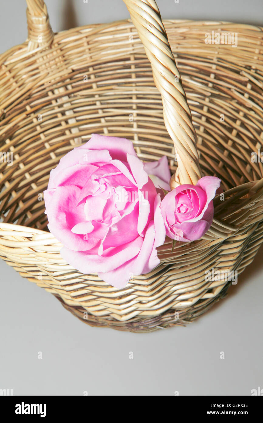 Hand-woven basket with roses buds on a white background Stock Photo ...