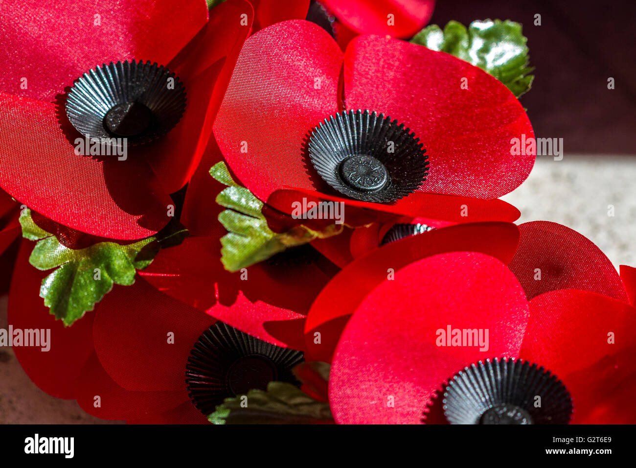 Close Up of Red Poppies on a Remembrance Day Wreath - Stock Image