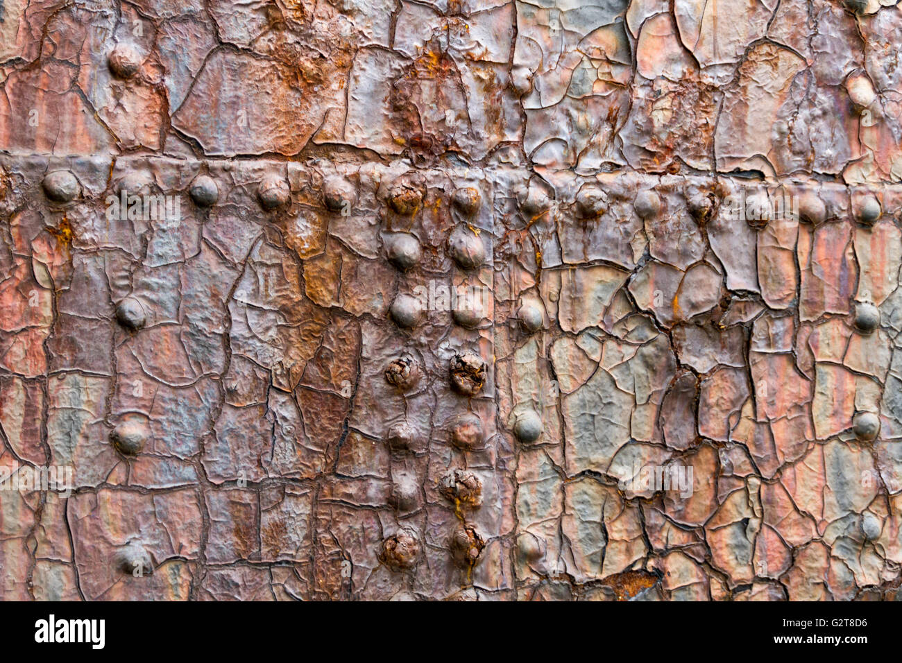 Close up of large steal door at a dry dock in Belfast Northern Ireland - Stock Image