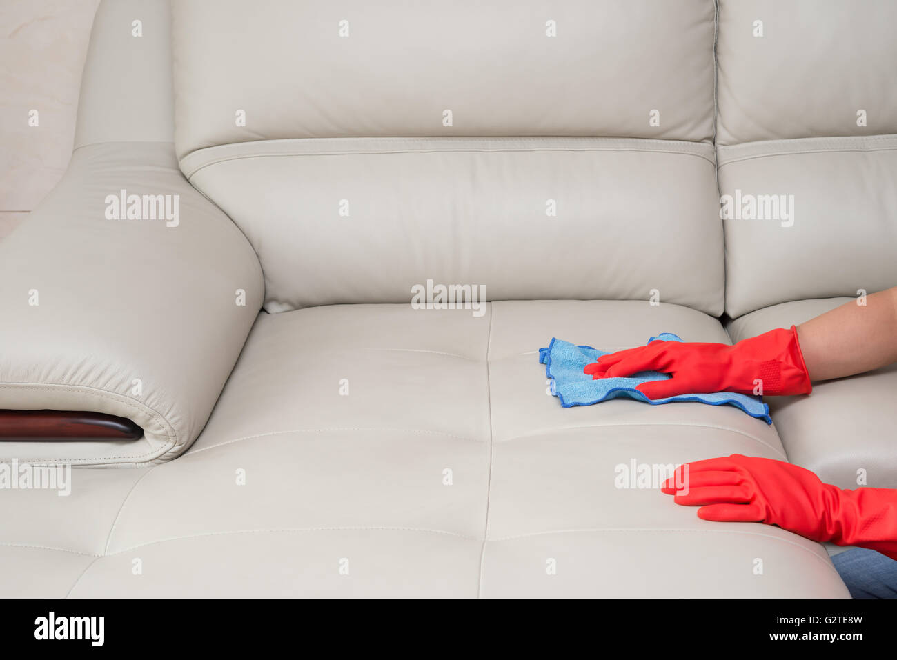Cleaning Leather Sofa At Home Stock Photo 105029593 Alamy