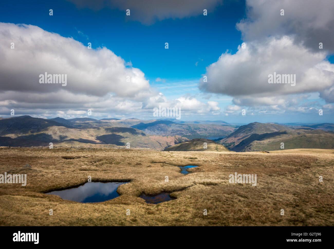Summer views from Hartsop Dodd, The Lake District, Cumbria, UK - Stock Image