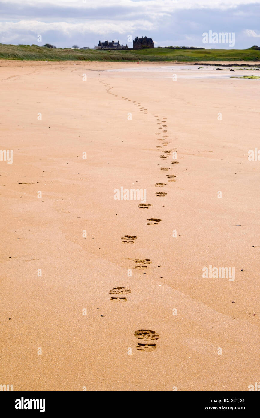 Line of footprints leading away in sand along Fife Coastal Path low tide route with walker in distance. West Beach - Stock Image