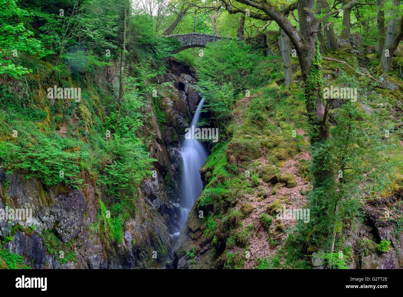 Aira Force, Watermillock, Lake District, Cumbria, England, UK - Stock Image