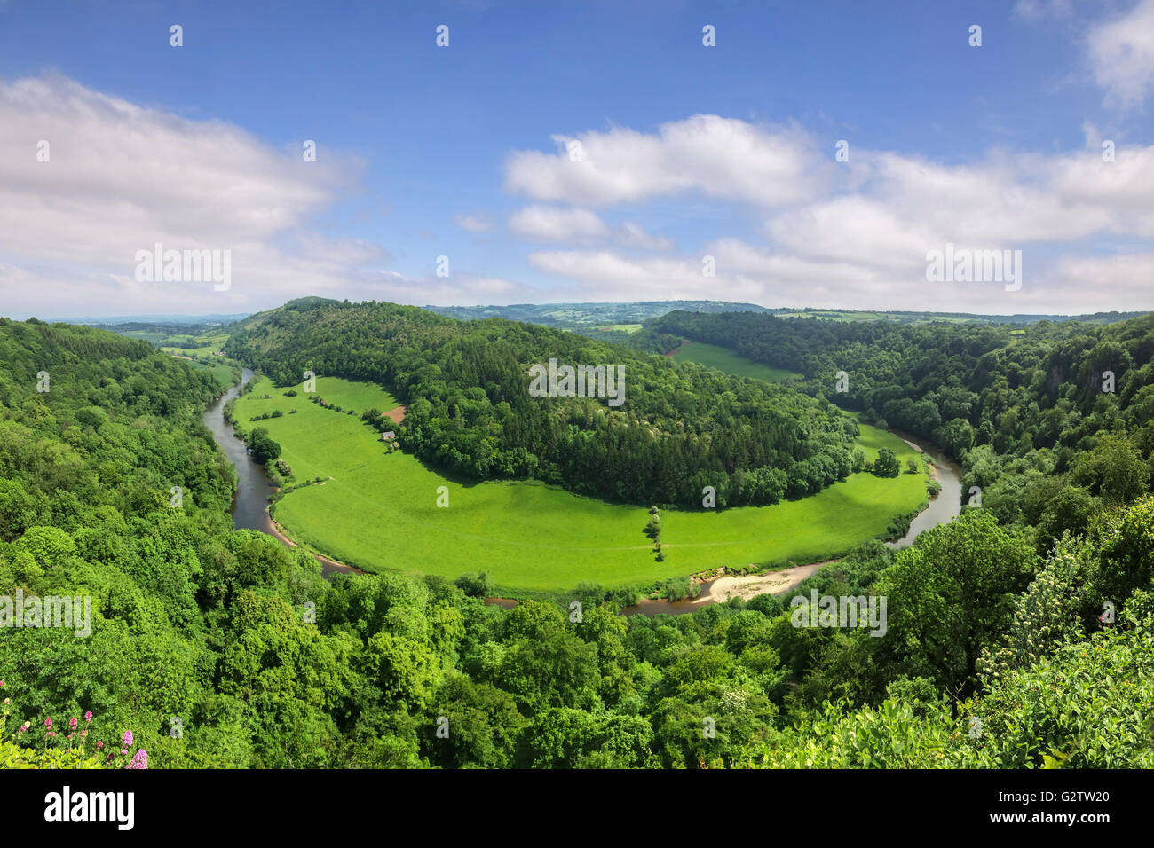 The Wye Valley from Symonds Yat Rock, Gloucestershire, England, UK, in early summer. - Stock Image