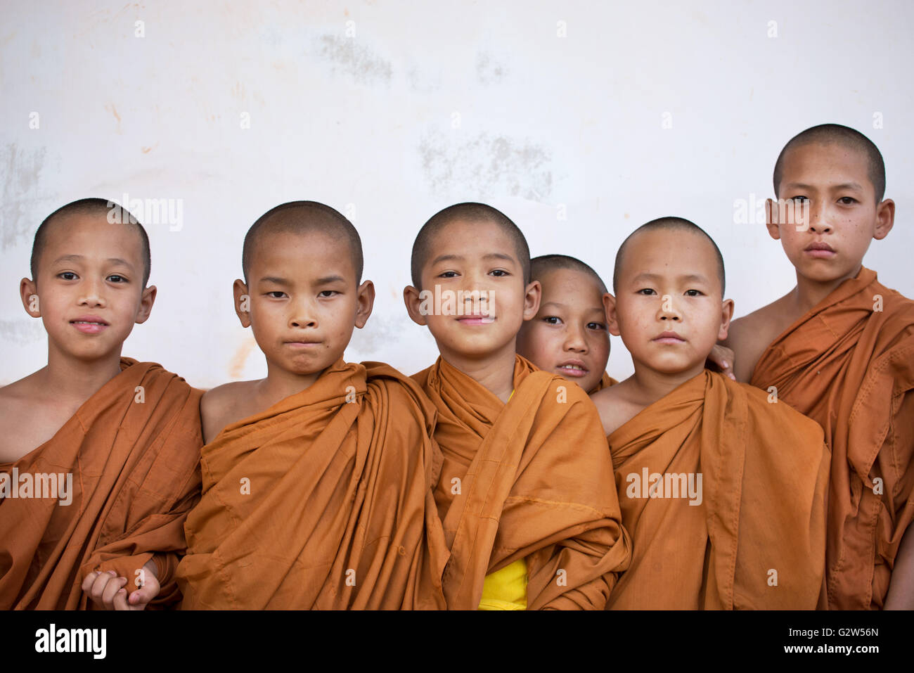 Young novice monks with saffron robes, Shan State, Myanmar - Stock Image