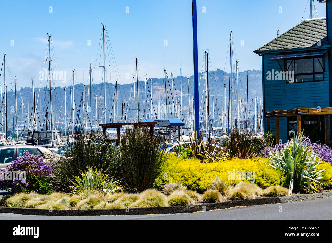 Emery Cove Yacht Harbor on Powell Street in Emeyrville California - Stock Image