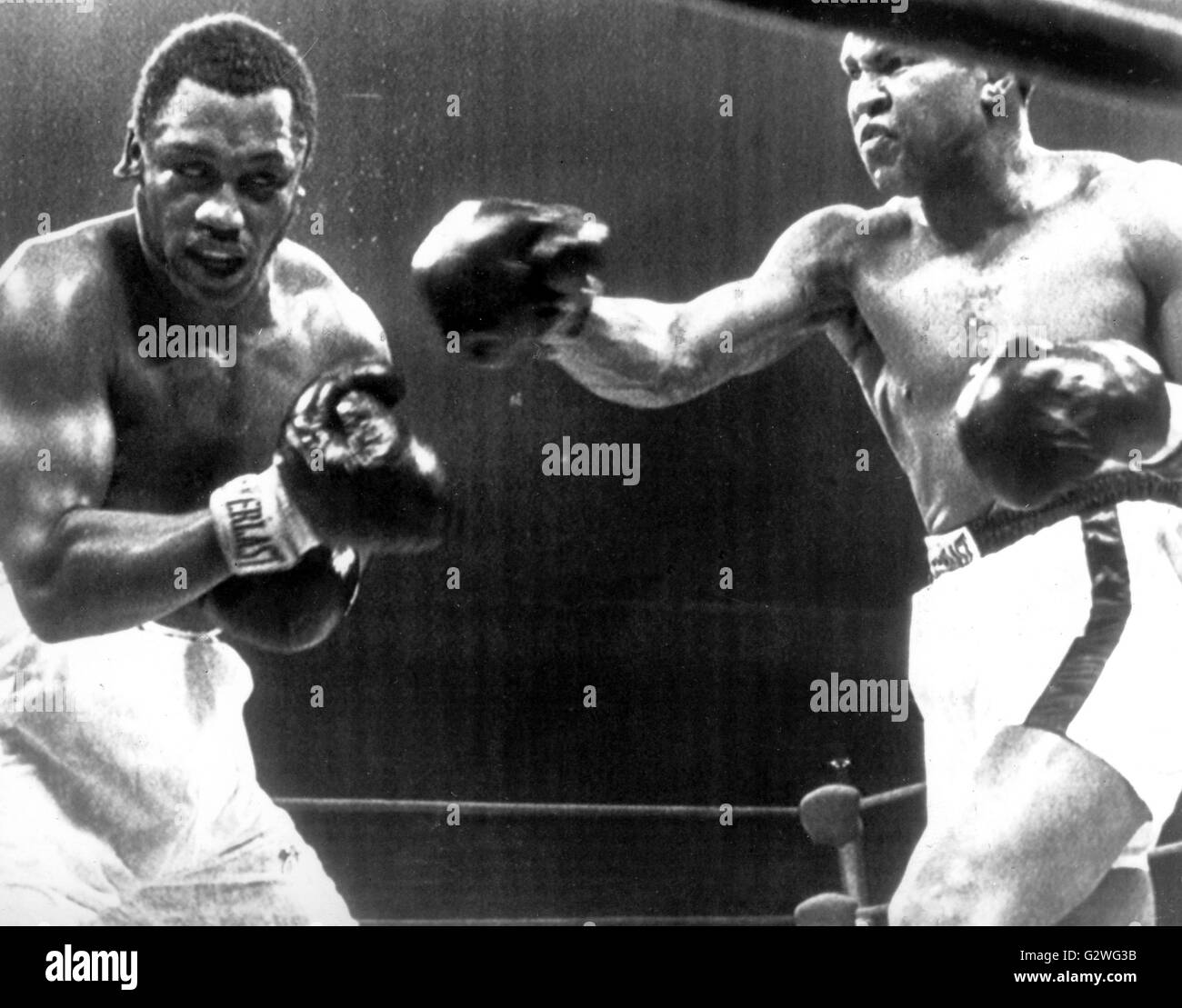 FILE - A file picture dated 29 January 1974 shows US heavyweight boxer Muhammad Ali (R) and his opponent Joe Frazier - Stock Image
