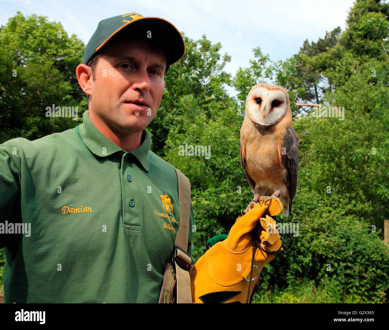 Damian and Pickles, Dromoland School of Falconry, Dromoland Castle - Stock Image