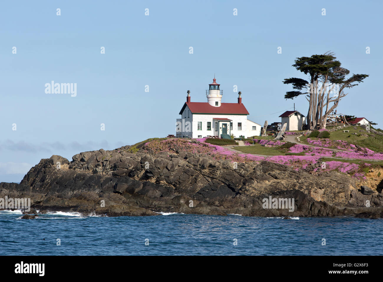 Battery Point Lighthouse,  Sitka Spruce,  Del Norte County. - Stock Image