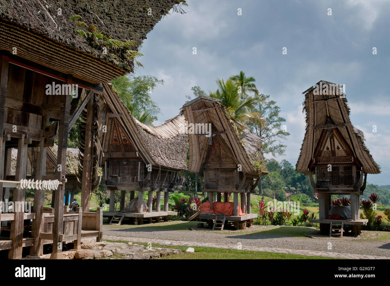Sulawesi, Kete Kesu Village, traditional stilt houses - Stock Image