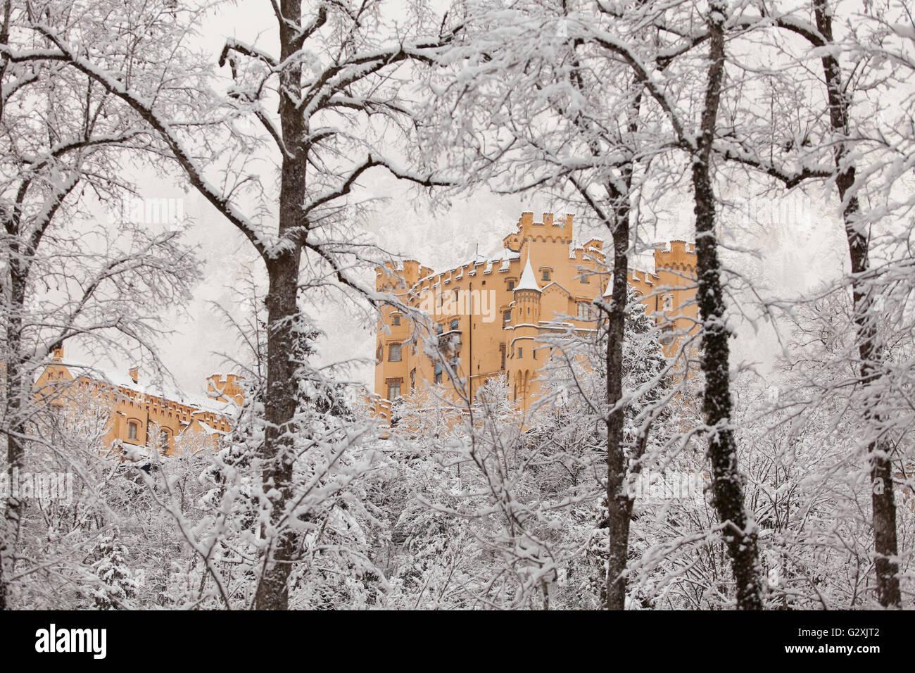 Hohenschwangau Castle in winter landscape - Stock Image